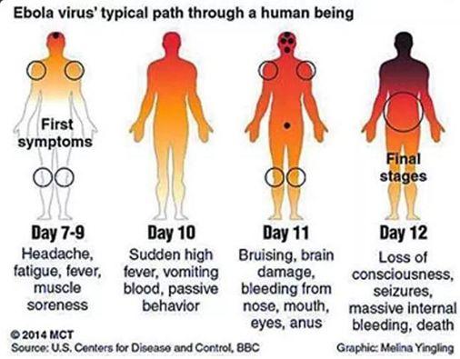 Ebola_Graphic